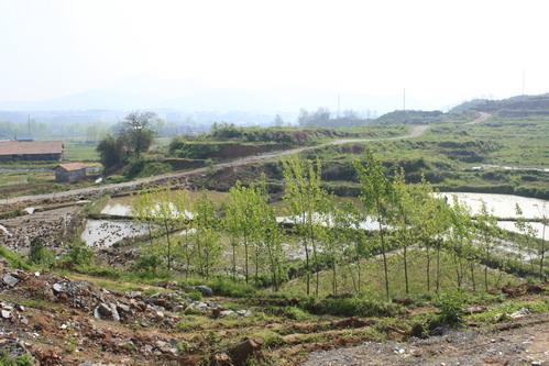 湖南风景被破坏的图片