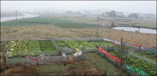 花草坪遗址位于湖南省长沙市宁乡县老粮仓镇唐市村,东北距宁乡