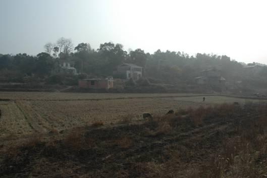 瓦窑塘窑址远景