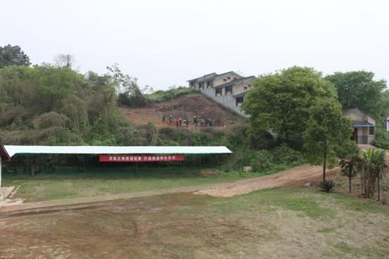 谭家坡1号龙窑遗址地貌(远景)